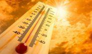 राजस्थान के चुरू में 47 डिग्री तक पहुंचा तापमान, देश के इन हिस्सों में अगले 5 दिनों तक भीषण लू…
